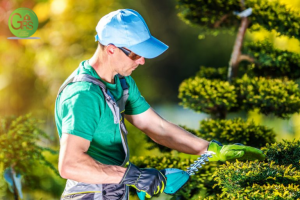 landscaping services in Los Angeles